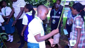 International Children's Climate change conference April 22nd 2017 on World Earth Day. Hosted at Kisu.